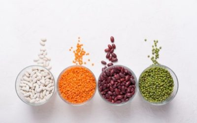 FDA Expands Scope of Chinese Vegetable Protein Import Alert for Melamine